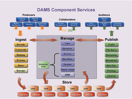 Architectural Considerations in Digital Asset Management