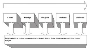 5 stages of content management